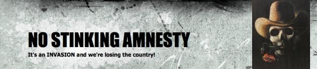 noamnesty_banner_02